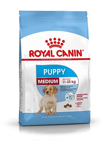 Royal Canin Medium Puppy, Hundefutter, 1er Pack (1 x 10 kg Packung) Verpackung variieren