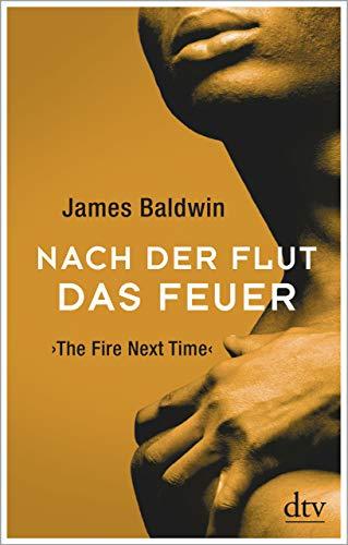 Buchseite und Rezensionen zu 'Nach der Flut das Feuer: The Fire Next Time' von Baldwin, James