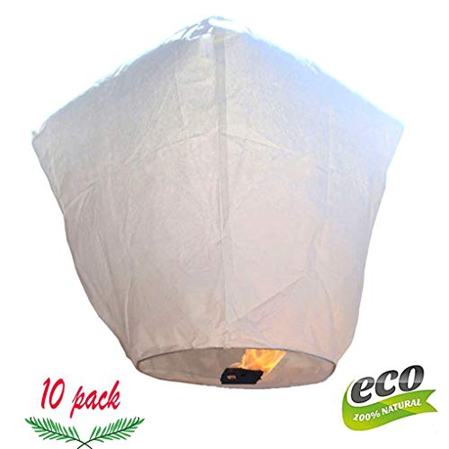 Maison Anniversaire,F/ête Tailles Assorties DaoRier 10PCS Lanterne en Papier lampions Blancs Lampion Chinois Abat-Jour en Papier Lanterne Boule pour D/écoration de Mariage