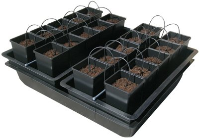 nutric ulture Wilma System–idrocoltura aero ponic 20Piante Grow Grow Set Coltivazione