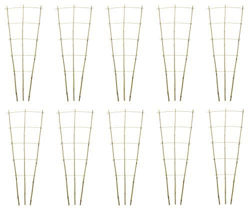 DARO DEKO Bambusrohr Rankgitter 44 x 110cm 10 Stück
