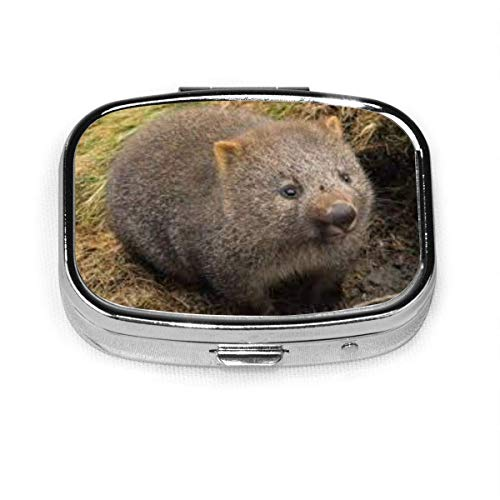 Cradle Mountain Land of Wombat Custom Fashion Square Pill Box Tablet Holder Pocket Purse Organizer Case Decoration Box