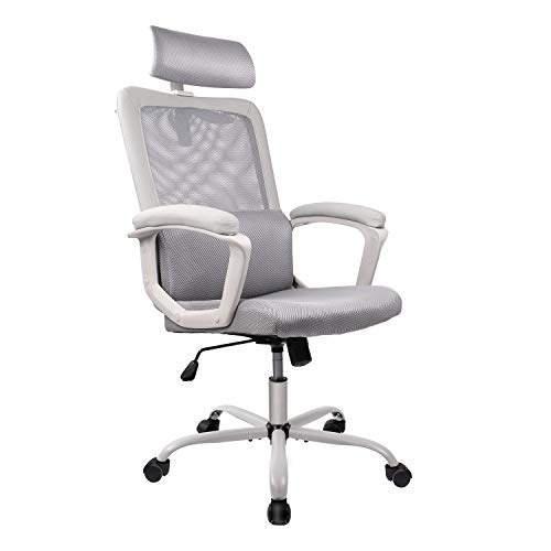 Smugdesk Office Chair, High Back Ergonomic Mesh Desk Office Chair with Padding...