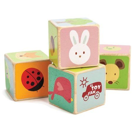 4 cubes Bois joli - LE TOY VAN