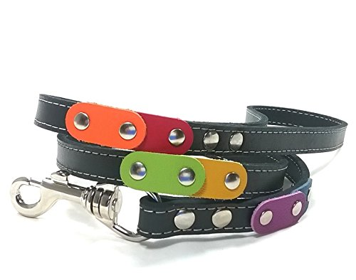 Superpipapo Leder Hundeleine in Style, Handmade Schwarz Design, 1m und 8 cm, (108 cm), Ausgefallenes Design mit den Regenbogen Farben und Nieten