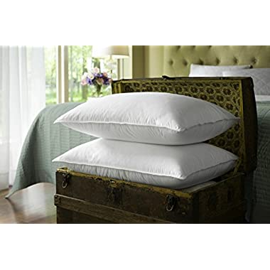 Sealy Posturepedic Twin Pack PrimaLoft Luxury Down Alternative Bed Pillow - Set of 2 - Soft/Medium Density (Jumbo 20  x 28 )