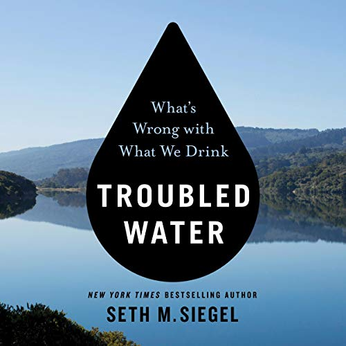 Troubled Water audiobook cover art