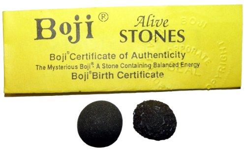 Boji lebende Steine Bojis Pop Rocks XL ca. 30 mm mit Echtheitszertifikat.(3403)