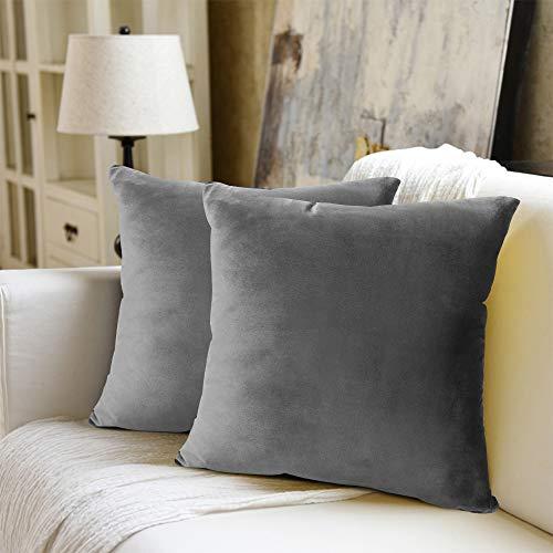 WEYON 2er Set Samt Kissenbezug Dekorative Dekokissen Kissenhülle mit Strapazierfähigem Verstecktem Reißverschluss für Sofa Schlafzimmer Auto 50X50cm Hellgrau