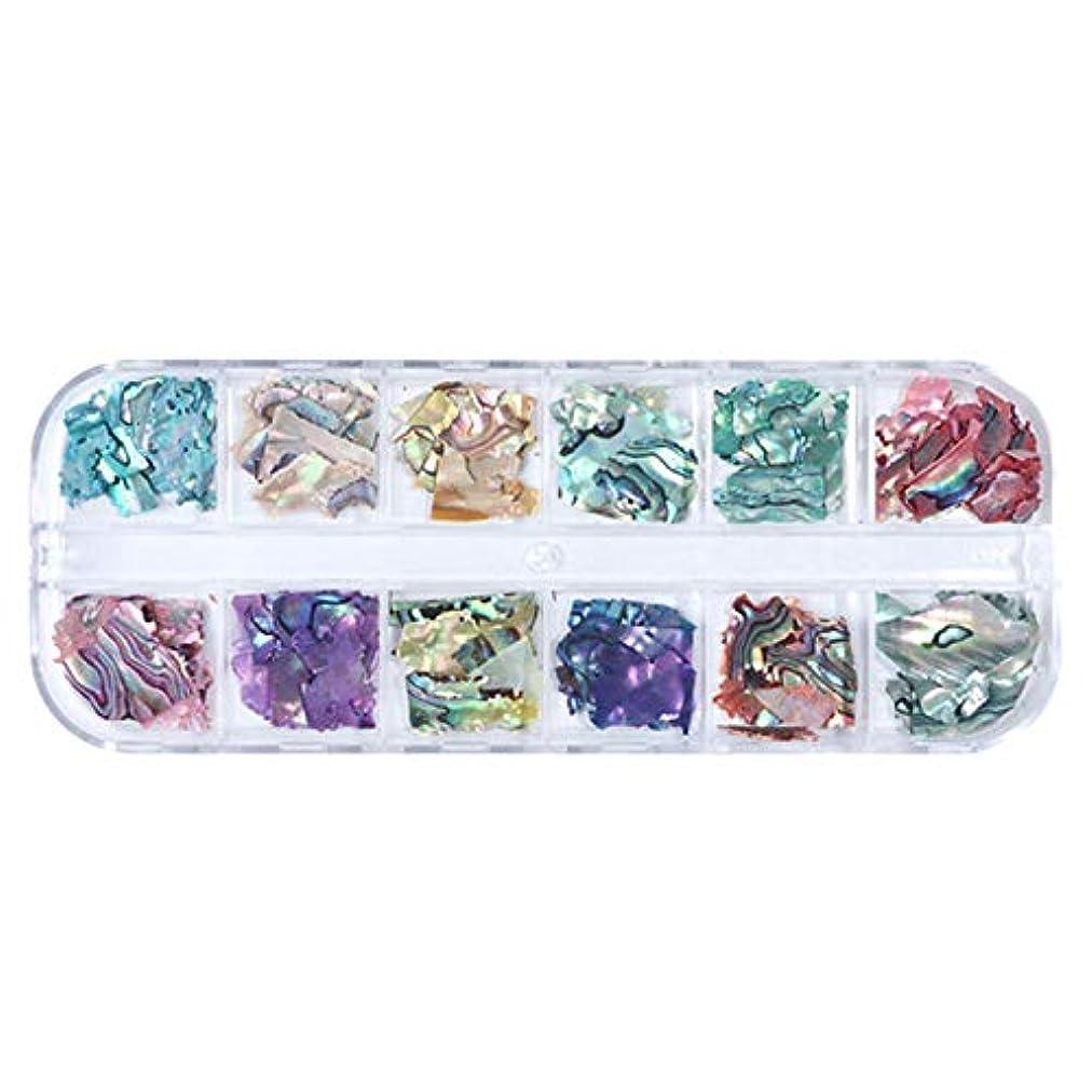 閉塞コンソール著作権TOOGOO 3D不規則アワビ貝殻スライス ネイルスパンコール マーメイドフレークホログラフィックグリッターネイルアートの装飾 ポーランドのマニキュアBy