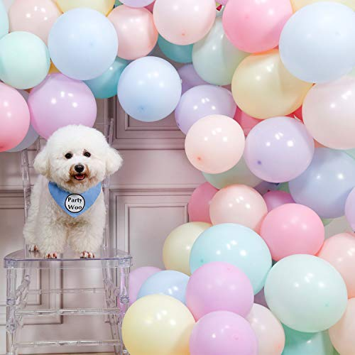 PartyWoo Luftballons Pastell, 100 Stück Helium Luftballons Satz von Ballon Pastell in 10 Farben Luftballons Pastellfarben Mix, Latexballons Pastell für Partydeko Pastellfarben, Pastell Deko Hochzeit