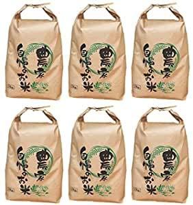 宮城県産 ササニシキ 玄米時30kg 令和2年度産 (1分づきに精米 4.95kg×6袋)