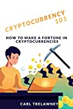 Cryptocurrencies 101 : How to Make A fortune in crypto: Everything you need to know about Bitcoin, blockchain, and cryptocurrencies in 2021!