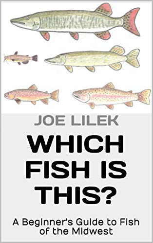 Which Fish is This?: A Beginner's Guide to Fish of the Midwest by [Joe Lilek]