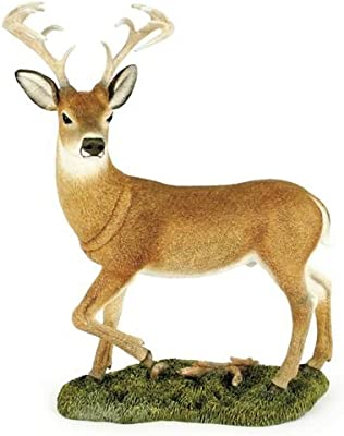 Retired Country Artists -White Tailed Deer Stog - CA04572 - Natural World