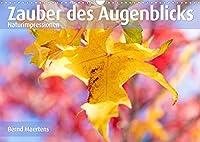ZAUBER DES AUGENBLICKS Naturimpressionen (Wandkalender 2022 DIN A3 quer): Farbenfrohe Naturimpressionen erfreuen den Betrachter. (Monatskalender, 14 Seiten )