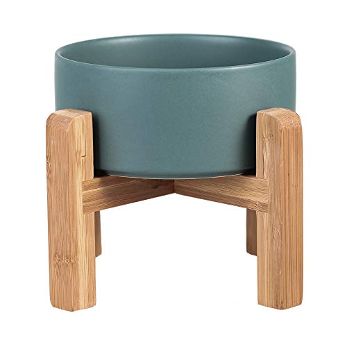 LIONWEI LIONWELI Green Ceramic Elevated Raised Cat Bowl with Wood Stand No Spill Pet Food Water Feeder Cats Small Dogs