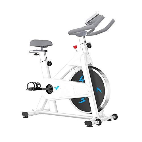Ciclismo Indoor bicicleta fija, transmisión del cinturón de bicicleta estática con un cómodo cojín del asiento, Bicicletas entrenamiento con resistencia magnética y LCD monitor for el hogar Ejercicio