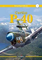 Curtiss P-40 Vol. I (Camouflage & Decals)