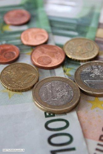Der Weg des Geldes: Der Ratgeber für den Kleinanleger