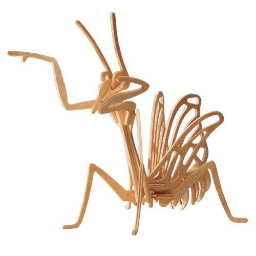 GOTTESANBETERIN 3D Holzbausatz - Insekt Fangschrecke - E019 von etna