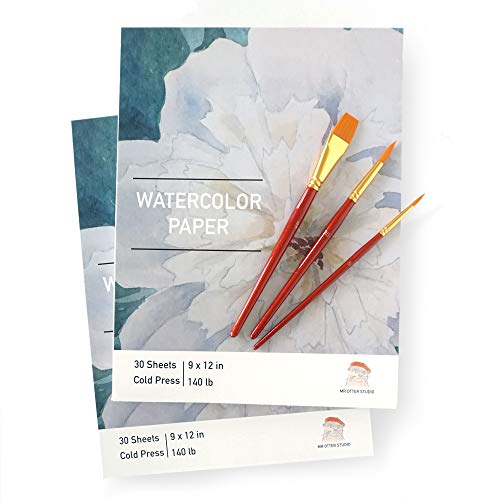 Watercolor Paper 2 Pack Plus Brushes - Cold Press, Textured 9'x12', 140lbs/300g, 60 Sheets