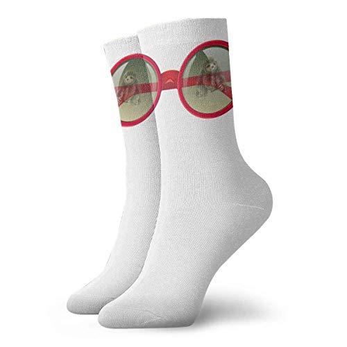 Drempad Luxury Calcetines de Deporte Book Sloth in Glasses Women & Men Socks Soccer Sock Sport Tube Stockings Length 11.8Inch