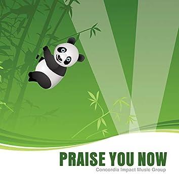 Praise You Now