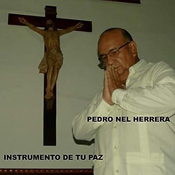 Instrumento De Tu Paz