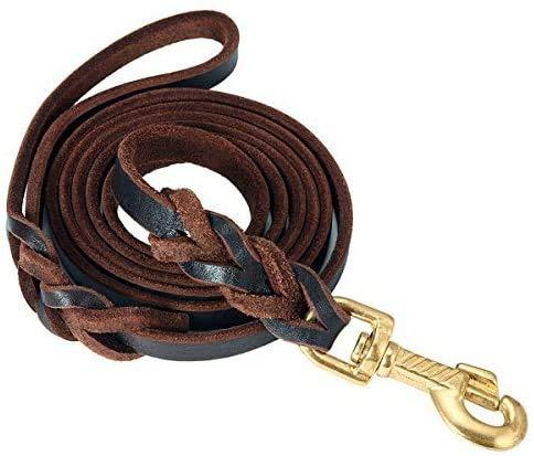 Focuspet Hundeleine Leder, 170X1.2cm Hundeleine aus Leder Geflochtene Leder Hundeleine wasserdichte Hunde Lederleine Für Große Hunde Dunkelbraun