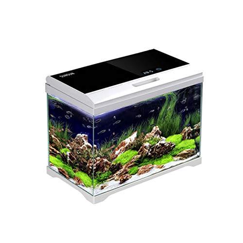 DUTUI Desktop Kleines Mini Faul Aquarium, Ökologisch Kreatives Zuhause Mit Lichtring, Glasmaterial, Goldfisch Kampf Aquarium, Gras Tank Wohnzimmer