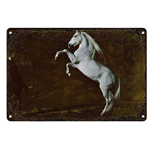 HOUJIA ZHONGMOU Cartel de caballo andaluz vintage de metal estaño para hombre, barra de cueva, hogar, oficina, cocina, restaurantes, cafeterías, decoración de pared de 30,5 x 20,3 cm