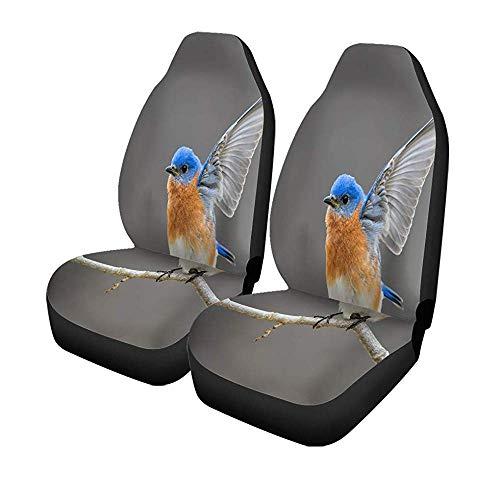 Beth-D set met 2 stoelhoezen voor auto, blauw vogel blauw oosters mannelijk open vleugels aan de voorzijde, universele autostoelbeschermer 14-17 inch
