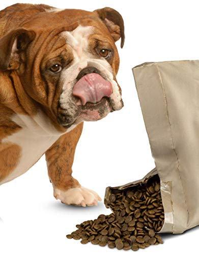 Bounce and Bella Complete Grain Free Dog Food, Angus Beef for Dogs with Sensitive Stomachs