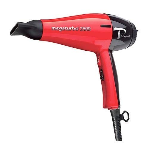 10 best professional blow dryer turbo for 2021