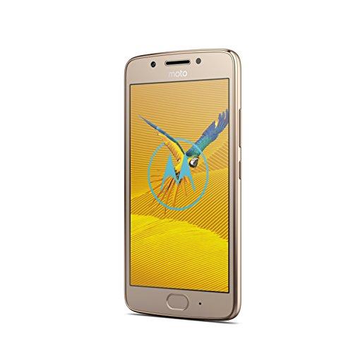 Motorola Moto G5 Smartphone (12,7 cm (5 Zoll), 2 GB RAM/16 GB, Android) Fine Gold