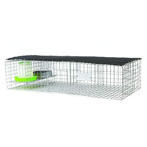 Bird B Gone Pigeon Trap with Shade, Food and Water Containers