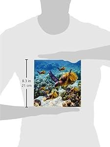 3dRose ct_26850_3 Sea Turtles Ceramic Tile, 8-Inch