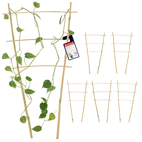 KADAX Bambusleiter, 5er Set, Stützleiter für Blumen, Garten-Pflanzenstütze aus Bambusholz, Blumengitter, Rankhilfe, Gitterspalier V-Form, Kletterhilfe (H:44,5cm, doppelt)