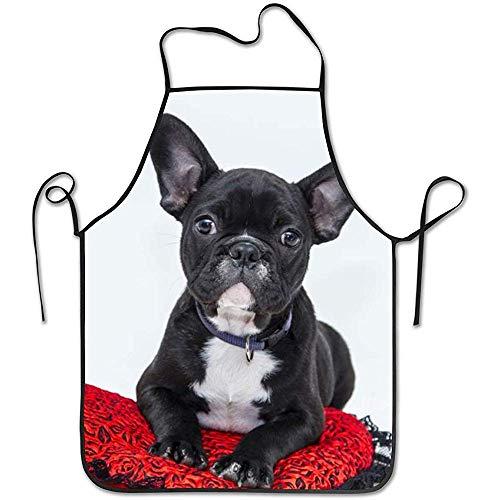 Katrine Store Bulldogge Hund Welpe lustige Haustiere Lätzchen Schürze Professional Durable Unisex