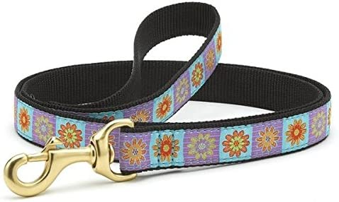 Up Country Lola Dog Leash 6 Ft Wide product image