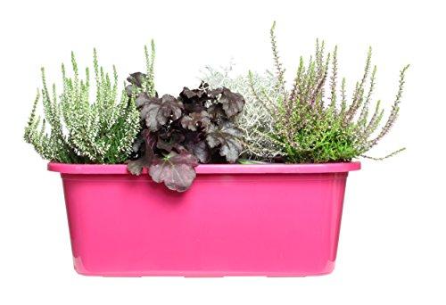 Ondis24 Balkonkasten mit Untersetzer inkl. Bewässerungssystem pink