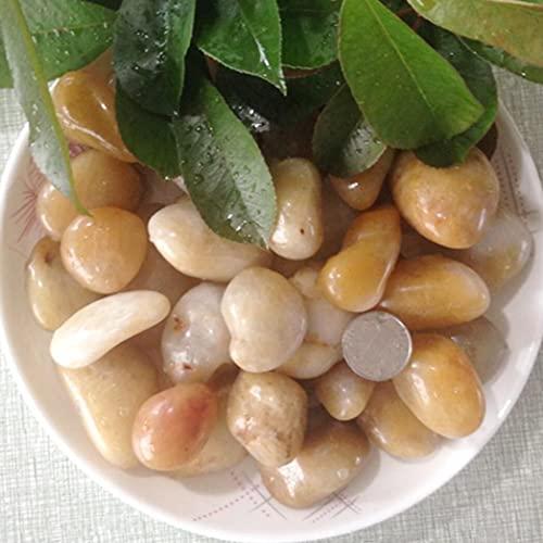Z-DJJ Piedras Decorativas, 2.5 kg, Rocas de río, guijarros pulidos, Piedras Decorativas, Grava Natural, suculentas Piedras y Rocas para...