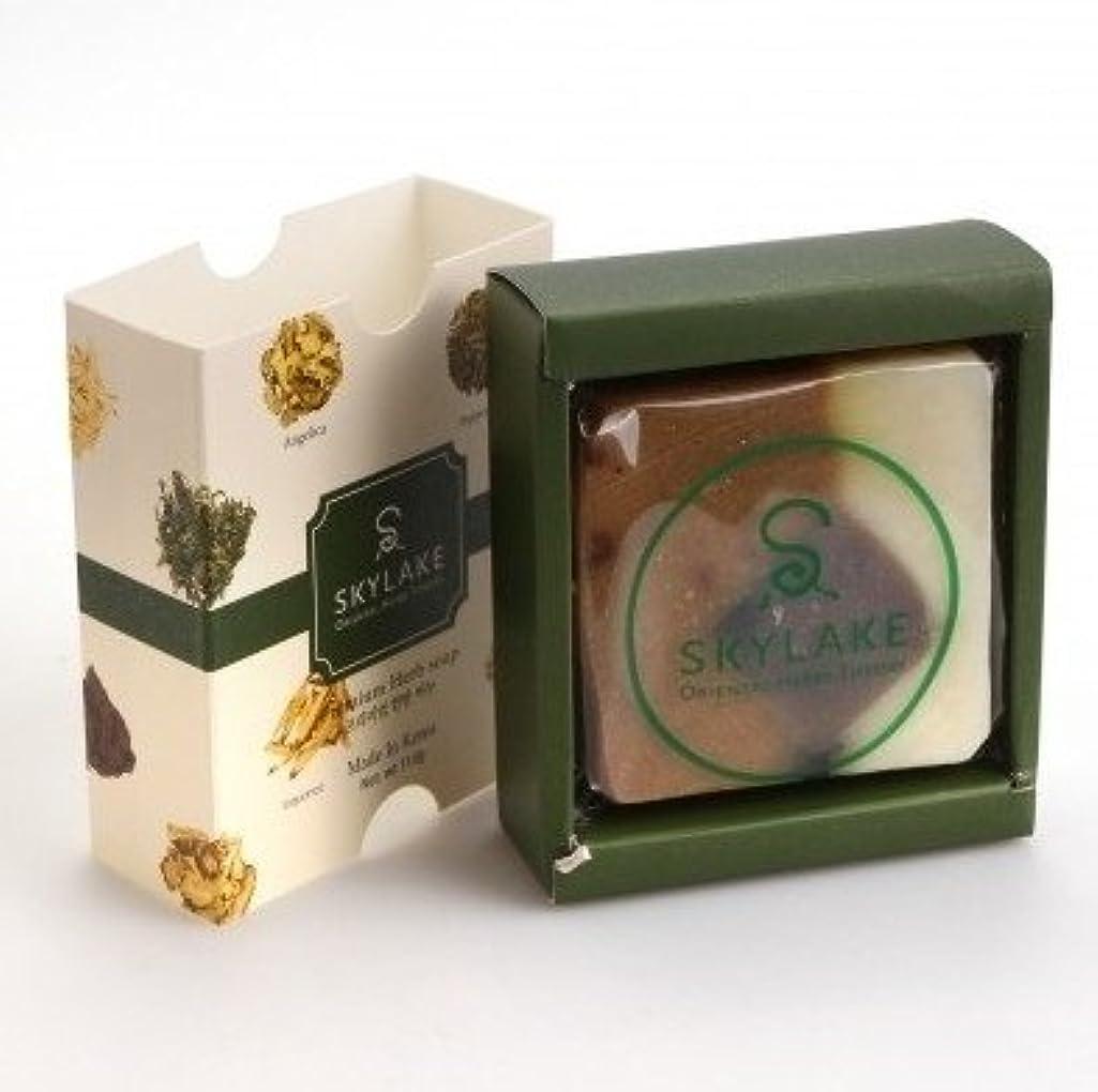 知覚的グローを除くハヌルホス[Skylake] 漢方アロマ石鹸Oriental Herbs Theory Soap (プレミアム 手作り漢方)