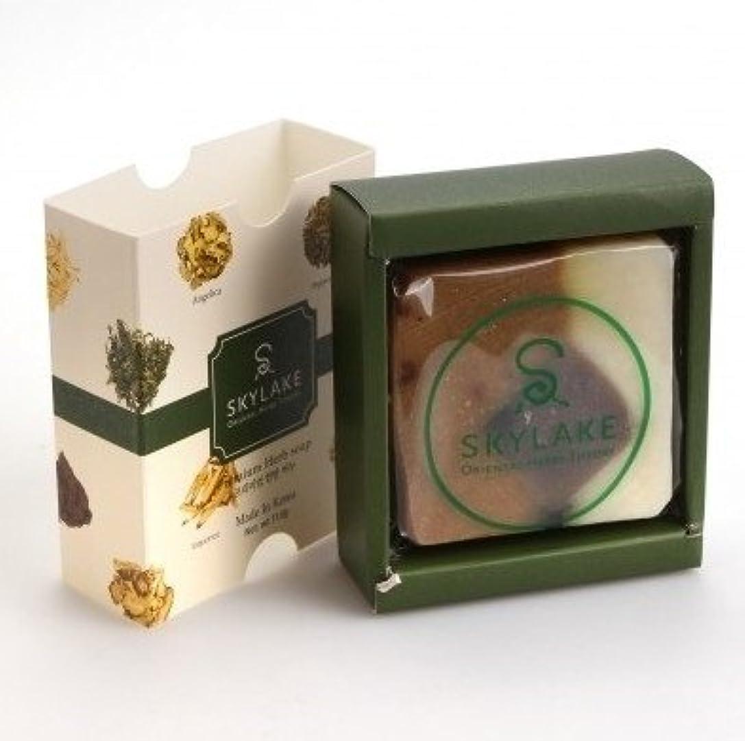製油所鰐批判的[1+1]ハヌルホス[Skylake] 漢方アロマ石鹸Oriental Herbs Theory Soap (プレミアム手作り漢方)