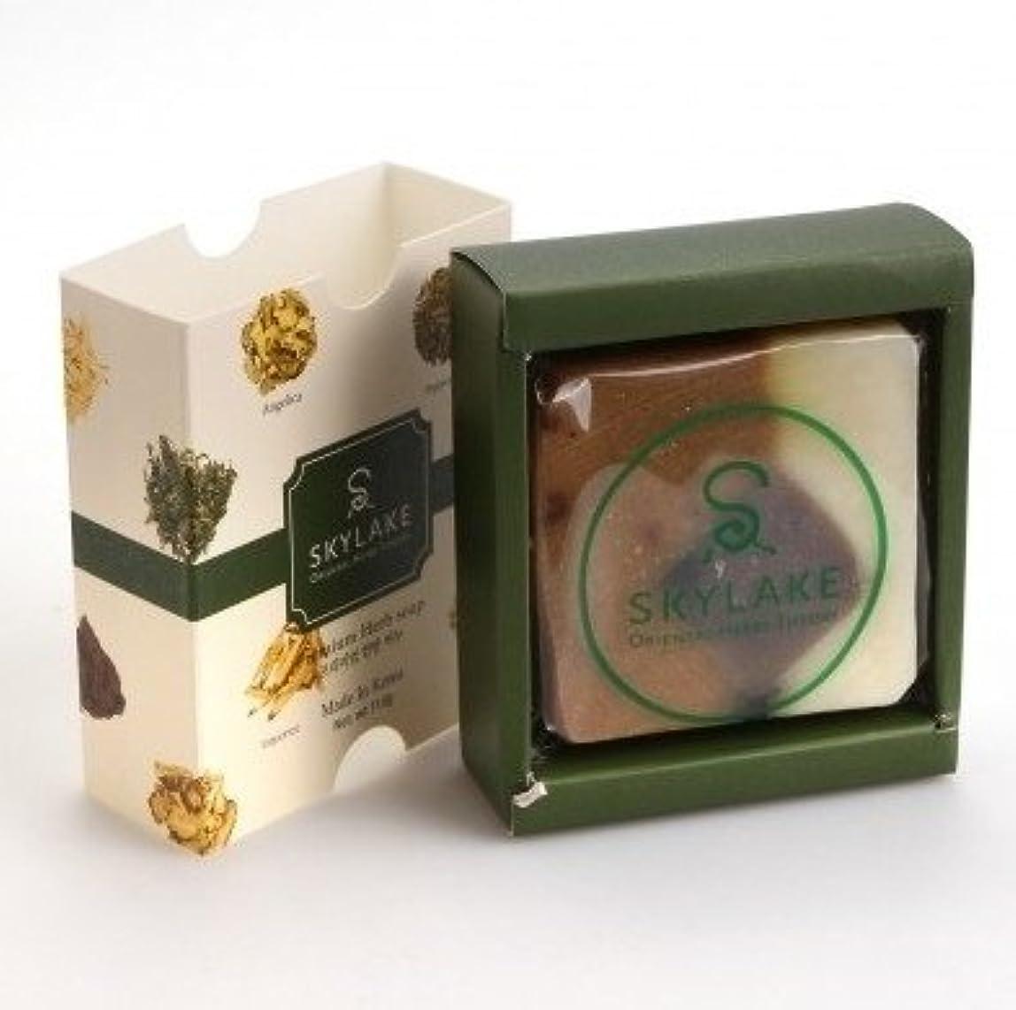 丁寧敬ビヨン[1+1]ハヌルホス[Skylake] 漢方アロマ石鹸Oriental Herbs Theory Soap (プレミアム手作り漢方)