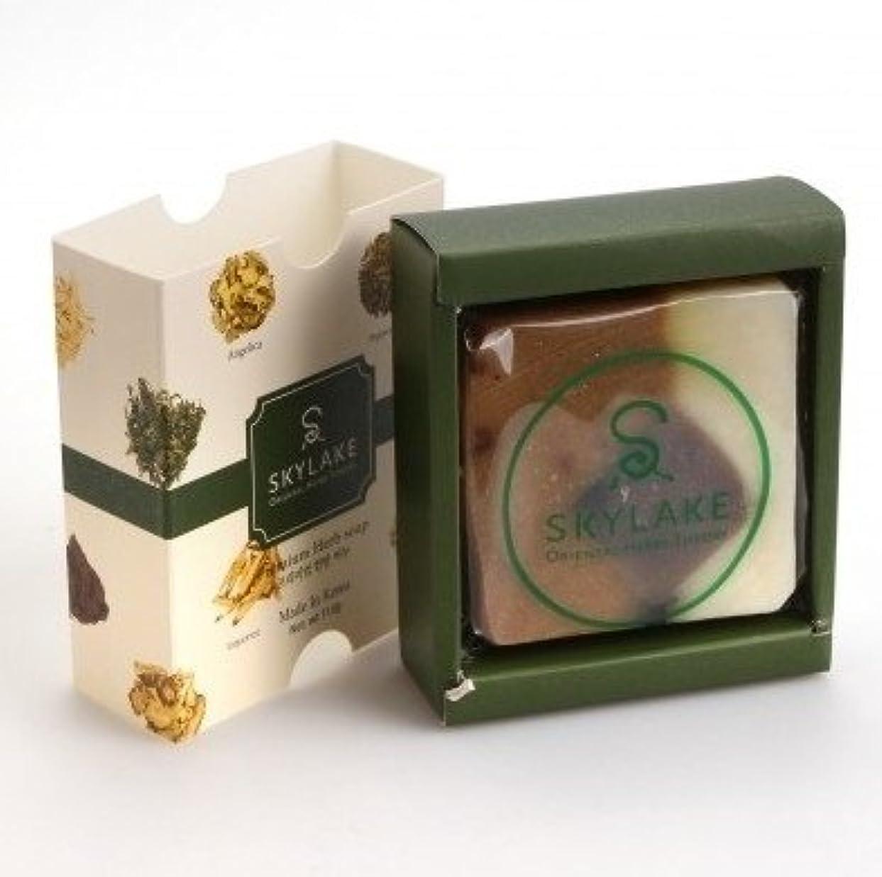 重要な役割を果たす、中心的な手段となるブラウス赤外線[1+1]ハヌルホス[Skylake] 漢方アロマ石鹸Oriental Herbs Theory Soap (プレミアム手作り漢方)