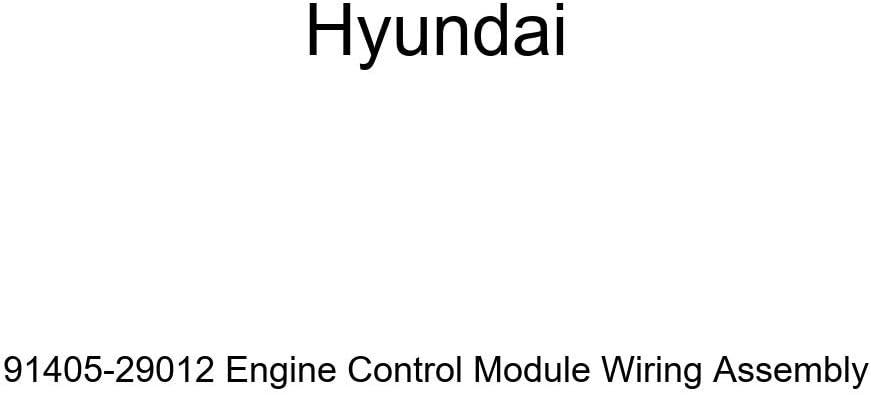 cheap Genuine Hyundai 91405-29012 Cheap mail order sales Engine Wiring Module Assembl Control