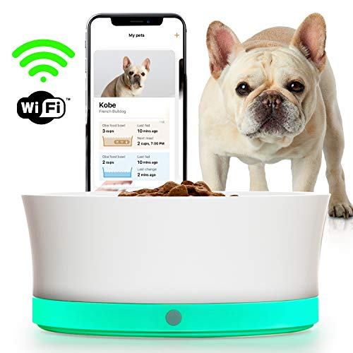 Smart bowl will tell you exactly how much to feed your pet