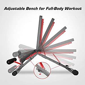 Pelpo Weight Bench for Full Body Workout, Strength Training Bench Press in Home Gym, Decline Incline Adjustable Utility Weight Bench with Fast Folding, Gray Frame